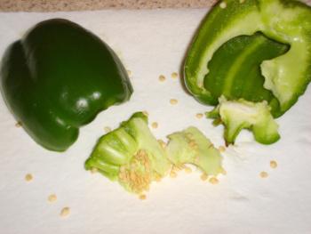 bell pepper saving seeds